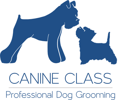 Dog Grooming Midsomer Norton